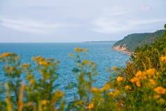 Flores contra uma paisagem do mar Foto de Stock Royalty Free