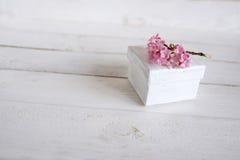 Flores cor-de-rosa com um presente pequeno Imagens de Stock
