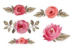 Flores cor-de-rosa da aquarela Fotografia de Stock Royalty Free