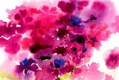 Flores cor-de-rosa da aquarela em um fundo branco Fotos de Stock Royalty Free