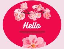 Flores cor-de-rosa da cereja hello Há um lugar para seu texto no fundo ilustração royalty free