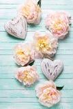 Flores cor-de-rosa das peônias e dois corações decorativos na turquesa w Imagem de Stock