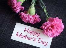 Flores cor-de-rosa do cravo com cartão Fotografia de Stock