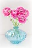 Flores cor-de-rosa do ranúnculo Foto de Stock Royalty Free
