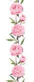 Flores cor-de-rosa dos peonies Quadro floral sem emenda da beira watercolor ilustração stock