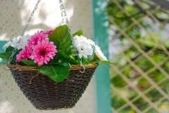 Flores cor-de-rosa e brancas na cesta imagem de stock royalty free