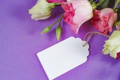 Flores cor-de-rosa e brancas no fundo roxo, disposição com espaço do texto livre, conceito do cartão, etiqueta de madeira branca Imagem de Stock