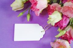 Flores cor-de-rosa e brancas no fundo roxo, disposição com espaço do texto livre, conceito do cartão, etiqueta de madeira branca Imagens de Stock
