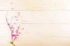 Flores cor-de-rosa em de madeira Fotografia de Stock