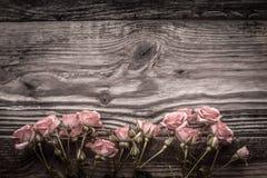 Flores cor-de-rosa em placas de madeira cinzentas Imagens de Stock Royalty Free