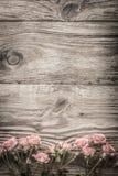 Flores cor-de-rosa em placas de madeira cinzentas Fotografia de Stock