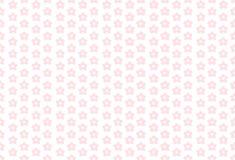 Flores cor-de-rosa em um fundo branco Imagens de Stock