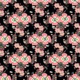 Flores cor-de-rosa em um teste padrão sem emenda do fundo preto Fotografia de Stock Royalty Free