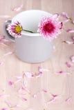 Flores cor-de-rosa em uma caneca Fotos de Stock Royalty Free