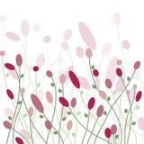 Flores cor-de-rosa no campo Imagens de Stock Royalty Free