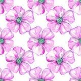 Flores cor-de-rosa no fundo Foto de Stock Royalty Free