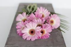 Flores cor-de-rosa no fundo branco Imagens de Stock Royalty Free