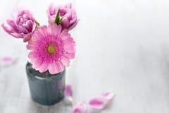 Flores cor-de-rosa para o dia de mães Fotografia de Stock