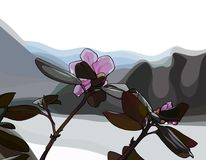 Flores cor-de-rosa pintadas em um fundo das montanhas Imagem de Stock Royalty Free