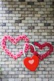 flores Coração-dadas forma em uma parede de tijolo Fotos de Stock