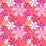 Flores corajosas no rosa Foto de Stock Royalty Free
