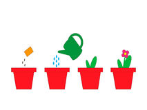 Flores crecientes en potes de semillas Imagen de archivo