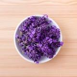 Flores da alfazema Imagens de Stock