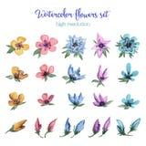 Flores da aquarela ajustadas ilustração stock