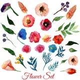 Flores da aquarela do vetor com folhas verdes Elementos modernos para seu projeto Pode ser usado nos cartazes, convites, bandeira Imagem de Stock Royalty Free