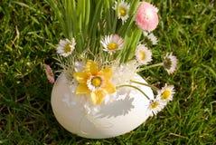 Flores da camomila no potenciômetro fotos de stock royalty free