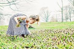 Flores da colheita da rapariga Imagens de Stock