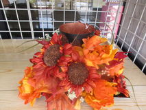 Flores da estação Imagens de Stock Royalty Free