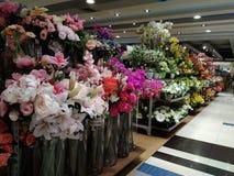 Flores da exposição na perspectiva Imagens de Stock Royalty Free