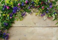 Flores da floresta em um fundo de madeira Fotografia de Stock