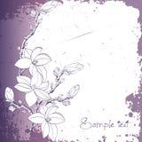 Flores da magnólia para o cartão ou o convite Imagem de Stock