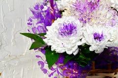 Flores da margarida branca em uma cesta Foto de Stock Royalty Free