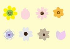 Flores da mistura Fotografia de Stock