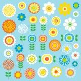 Flores da modificação Fotos de Stock