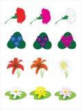 Flores da mola. ilustração stock