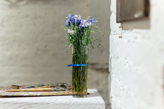 Flores da mola ajustadas no fundo branco do tijolo Foto de Stock