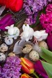 Flores da mola com ovos de easter Fotografia de Stock