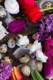 Flores da mola com ovos de easter Imagens de Stock Royalty Free