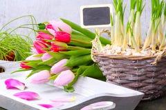 Flores da mola com placa da ardósia Fotografia de Stock Royalty Free