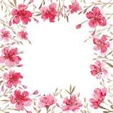 Flores da mola da aquarela ilustração do vetor