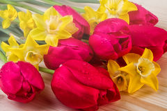Flores da mola do dia de mães Foto de Stock Royalty Free