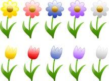 Flores da mola e do verão Ilustração Royalty Free