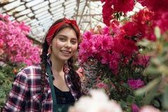 Flores da mola e do ver?o Jardineiro feliz da mulher na roupa de trabalho que olha a c?mera fotos de stock