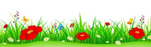 Flores da mola e encabeçamento da grama