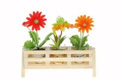 Flores da mola em uns potenciômetros Fotografia de Stock