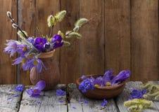 Flores da mola no fundo de madeira Foto de Stock